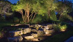 Uplighting trees landscape and outdoor lighting pinterest kichler landscape stonescape mozeypictures Choice Image