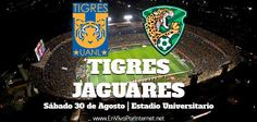 Tigres vs Jaguares En Vivo Liga MX Apertura 2014. Juegan hoy Sábado 30 de Agosto del 2014 a partir de las 17:00hrs Centro de México.  Donde ver partido En Vivo por Internet: http://envivoporinternet.net/tigres-vs-jaguares-en-vivo-jornada-7-liga-mx-apertura-2014/