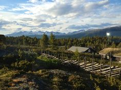 """""""Rondane"""" Norway, from my 5 day horseriding trip last year:-)"""