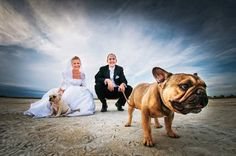 I am definitely taking a wedding picture with my dogs because they will be like my kids
