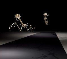 cartoon character skeletons