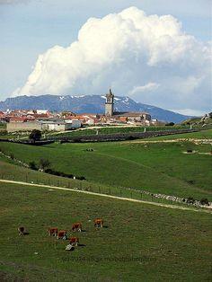 Colmenar Viejo - Paisaje recorriendo sus prados | Flickr: Intercambio de fotos