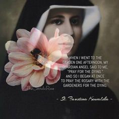"""When I went to the garden one afternoon, my Guardian Angel said to me, """"Pray for the dying."""" And so I began at once to pray the rosary with the gardeners for the dying. St Faustina Kowalska, Saint Dominic, St Maria, Saint Quotes, My Guardian Angel, Mary And Jesus, Divine Mercy, Catholic Quotes, Catholic Saints"""