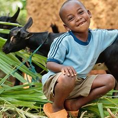 Help end hunger with Heifer International this holiday season. Put a goat on your wish list.