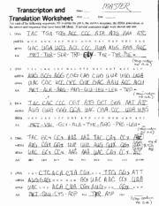 Transcription And Translation Practice Worksheet Luxury Transcriptio In 2021 Transcription And Translation Dna Transcription And Translation Persuasive Writing Prompts Transcription and translation worksheet key