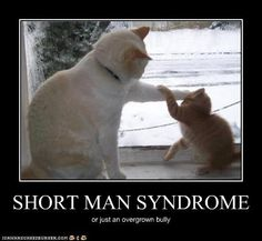 how to deal with short man syndrome