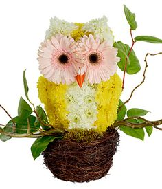 "This attention-grabbing floral creation is an absolute ""hoot"", featuring a…"