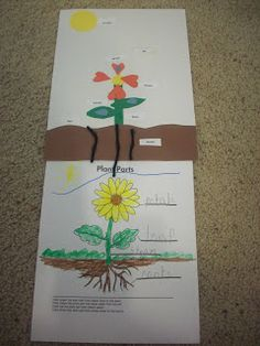 Spring Storybooks, Lessons, Projects, Art and Links! - Enchanted Homeschooling Mom