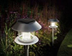 Gardman Orion Stainless Steel Solar Lights by Gardman. $110.00. Pack of four solar lights. High quality construction ensures longevity. Lights are solar powered for energy efficiency. Stainless steel solar lights. Switch on automatically at dusk and off at dawn. These stylish border lights are solar powered and switch on automatically at dusk and off at dawn, making them ideal for illuminating your garden at night. The simplistic look and stainless steel finish ...