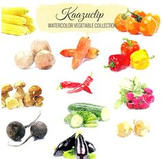 Watercolor Vegetable Set by Kaazuclip on Creative Market