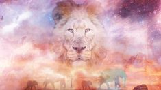 Bianca Ban - Spirit Of Africa [Epic Music - Beautiful Uplifting Orchestr...