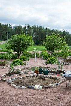 Takana, Stepping Stones, Outdoor Decor, Garden, Plants, Home Decor, Garten, Room Decor, Gardens