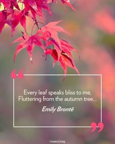 Who's excited for the first day of fall this week?!  #MotivationMonday #fall