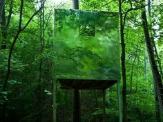 Invisible treehouse