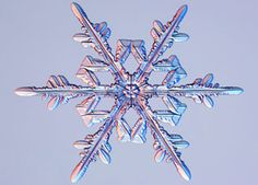 How do snowflakes get their shape?