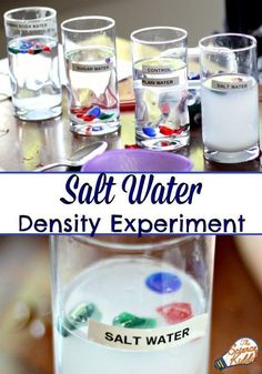 This super easy salt water experiment is the perfect science activity to teach kids about the density of salt and fresh water. Great for an ocean unit!