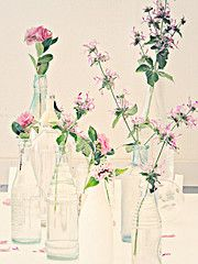Vases & Flowers for Color!