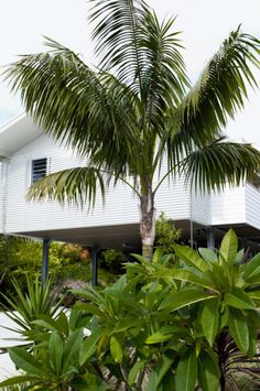 Coastal Style: Renovated Beach House