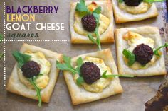 blackberry lemon goat cheese squares -- these are delicious and very little work! if you're in a rush you can use flavored goat cheese instead of adding lemon and honey. adorable party treat or light dessert >> These look amazing!
