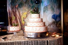 beautiful cake in a lovely retro vintage theme H by Heverus, via Flickr