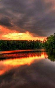 Amazing River Forest Sunset Wallpaper | Nexus 7 Wallpaper -http://www.nexus7wallpaper.com/nature/67/river-forest-sunset-wallpaper/