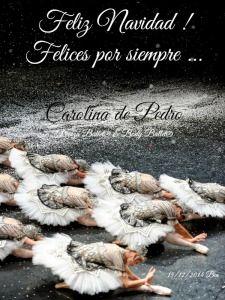 Una Feliz Navidad Para Todos!  Carolina de Pedro Pascual Danza Ballet® & Body Ballet®