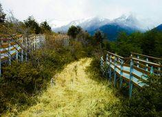 Parque Nacional Los Glaciares. Santa Cruz. Patagonia. Argentina. Octubre 2014