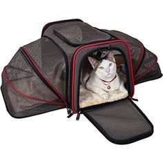 """Petsfit 18""""x11""""x11"""" Expandable Foldable Washable Travel Carrier, Airline Approved Pet Carrier Soft-sided"""
