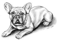 Barney Französische Bulldogge Hund Haustier Bleistiftzeichnung Zeichnung Platz
