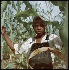 Bildergebnis für gordon parks growing up in kansas