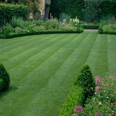 Plant, sow and seed your way to a beautiful garden this growing season Landscape Architecture, Landscape Design, Garden Design, Sloped Landscape, Amazing Gardens, Beautiful Gardens, Large Backyard Landscaping, Sloped Garden, Landscape Drawings