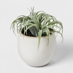This beautifully crafted artificial plant from Threshold can vastly enhance the beauty of the decor in your home or office. Faux Succulent in White Pot - Threshold Multi-Colored amp; Faux Succulents, Planting Succulents, Ceramic Planters, Planter Pots, Powder Room Decor, White Pot, Fake Plants Decor, Gras, Minimalist Living