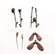 FANIE ROUX   🌜POETIC COPPER TREASURES 🌛handmade in Cologne ✨ Alchemist 🌿Vegan 🌔   Ahornblatt I Kupferschmuck I Mohn I Curated Nature www.etsy.com/shop/fanieroux
