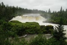 pisew falls - Google Search Writers And Poets, Mother Earth, Grass, Waterfall, Blessed, Spirit, River, Banks, Blessings