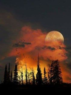 Gorgeous Moon and Sky