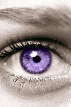 I want purple contacts!