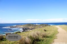 Visit Bingi Bingi Point for a great family day out