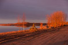 Trees along the Moose River at sunrise. Present Day, Ontario, Vintage Photos, Moose, Sunrise, Desktop, Country Roads, River, Adventure