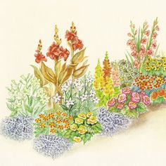 How to Winterize Tender Landscape Plants for Next Season - Gardening - Mother Earth Living