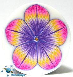 ●••°‿✿⁀ Flowers ‿✿⁀°••●