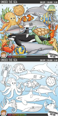 Under the Sea (Educational Use Version) by Kate Hadfield. Under the Sea includes 21 digital illustrations created from my original hand painted artwork! Each design comes supplied as a full colour png, as well as black and white outline versions (in png and jpeg formats). All images are 300 dpi for best quality printing.