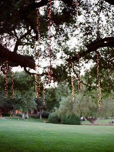 Wedding Ideas: tree-hanging-lights