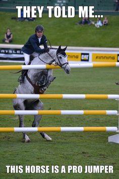 Så synd for hesten !!!!!!