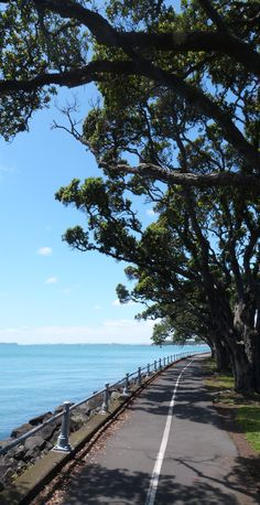 My favourite beach in Auckland : Mission Bay - Auckland, North Island, New Zealand. Find out how you can get the cheapest Flights .. http://iwantthatflight.com.au/
