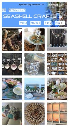 20 gorgeous seashell craft ideas you don't want to miss!