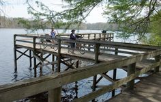 Take a break on Lake Henderson while travelling the Withlacoochee State Trail.