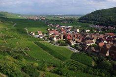 Le schlossberg a kaysersberg route des vins d alsace guide du tourisme de l alsace