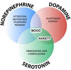 How do Ssri Work?