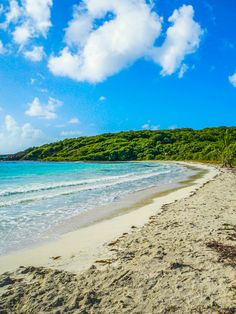 Vieques is home to some of the most beautiful beaches in the world.