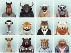 Animal portrait by Yago Partal
